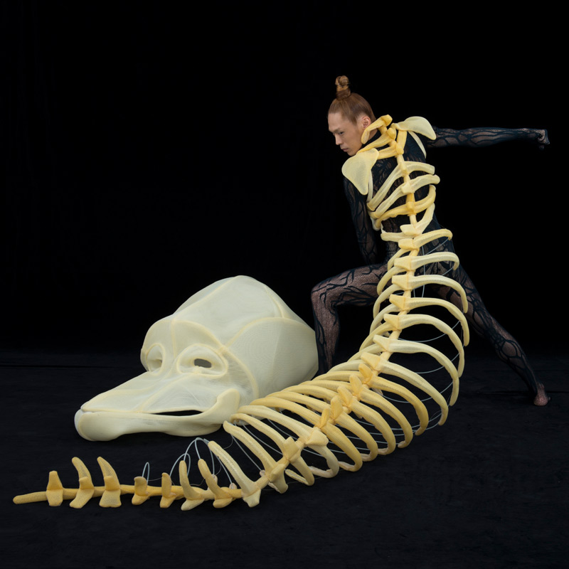 Live Bone
